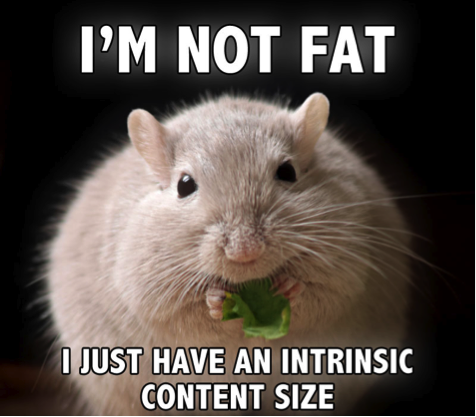 I-am-not-fat