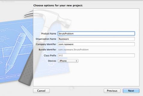 StrutsProblem-project-options-476x320